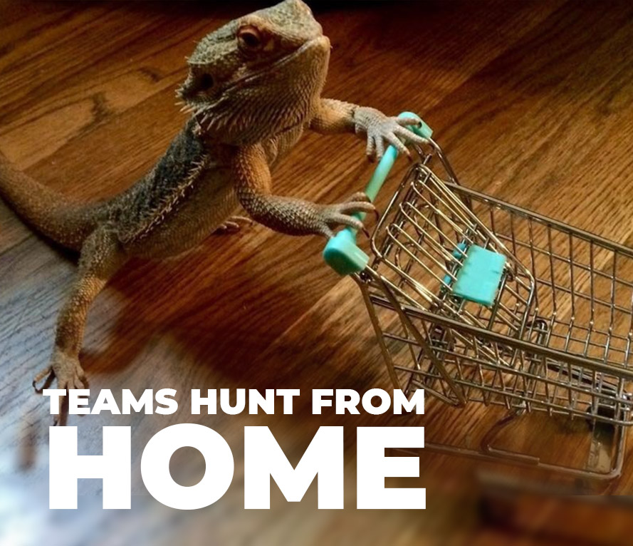 Teams Hunt from Home